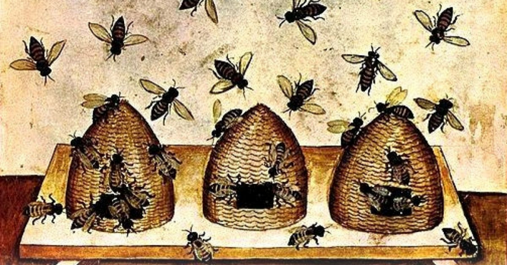 The fable of the bees or private vices