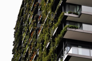 Planning Authority launches 'Green Your Building' scheme