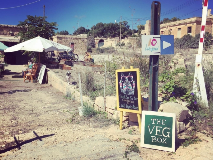 The Veg Box: bridging the gap between farmer and consumer